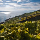 Lavaux2_swiss-image.ch_Marcus Gyger